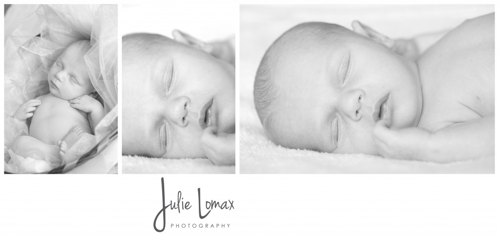 Baby Portraits_0199