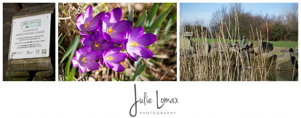 spring flowers_0042