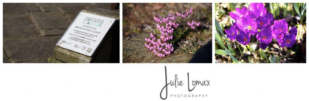 spring flowers_0043