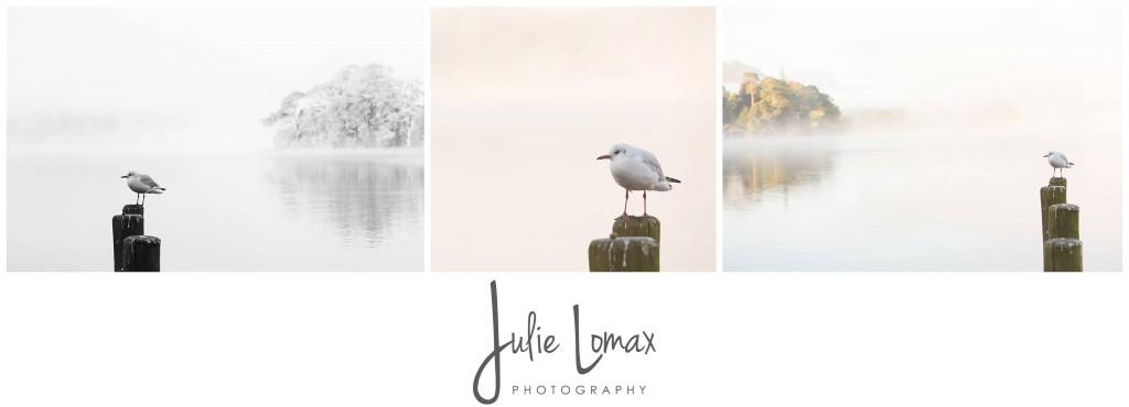 Landscape Photographer Bolton julie lomax 07879011603_0015