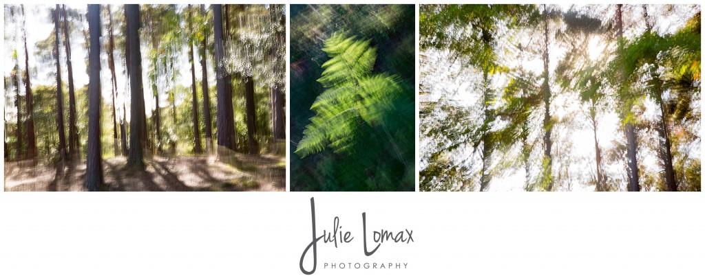 Landscape Photographer Bolton julie lomax 07879011603_0024