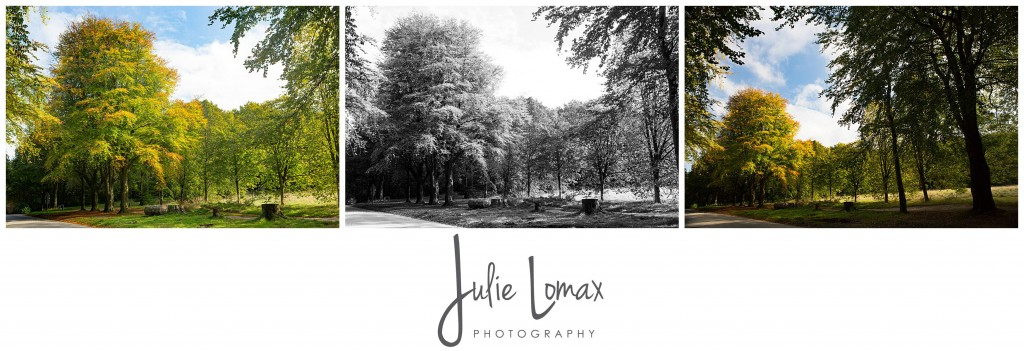 Photographer Bolton julie lomax 07879011603_0009