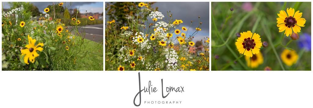 Photographer Bolton julie lomax 07879011603_0015