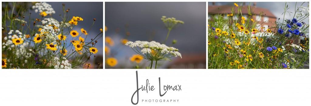 Photographer Bolton julie lomax 07879011603_0016
